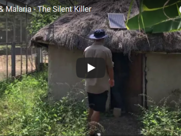 Africa & Malaria - The Silent Killer